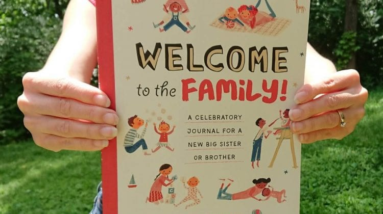 books for older siblings new baby