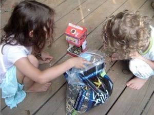 milk carton bird feeder instructions
