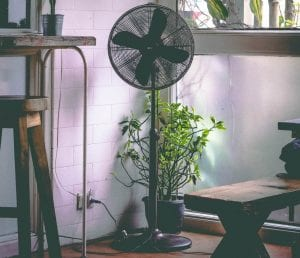Keep house Cool Without AC