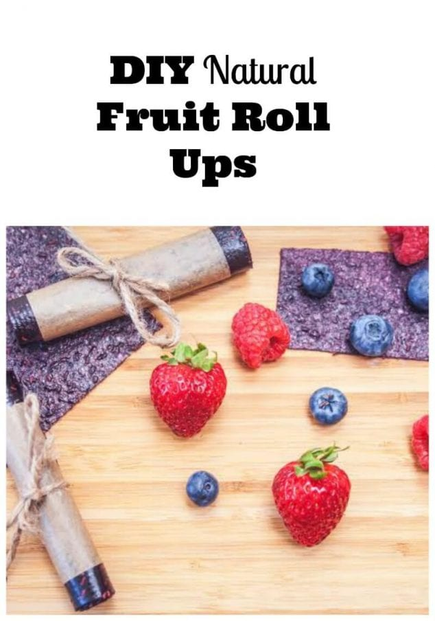 diy natural fruit roll ups