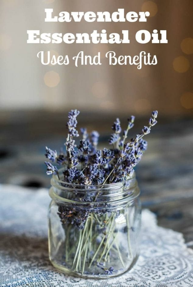 Lavender Essential Oil Uses And Benefits