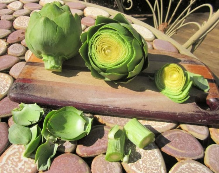 how to prepare artichokes for cooking