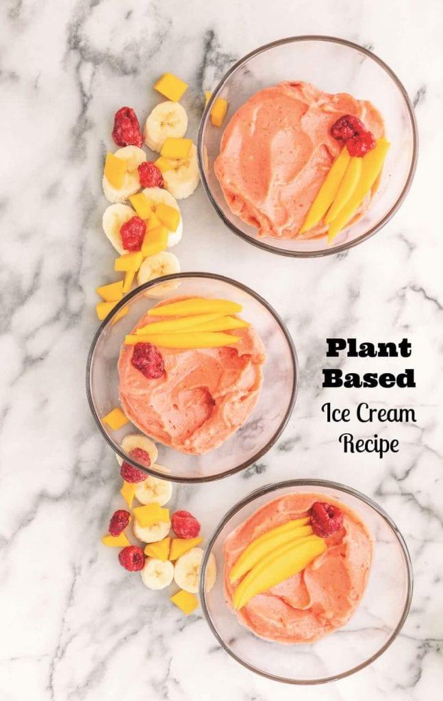 plant based ice cream recipe
