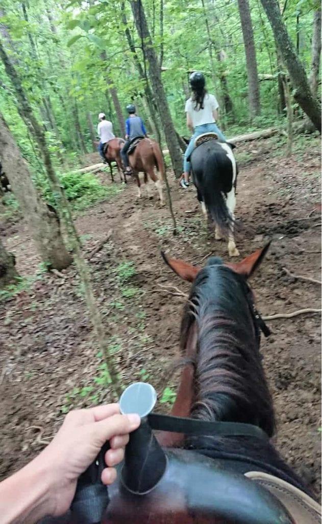 horseback riding ocoee